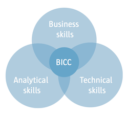 Business Intelligence Competency Center